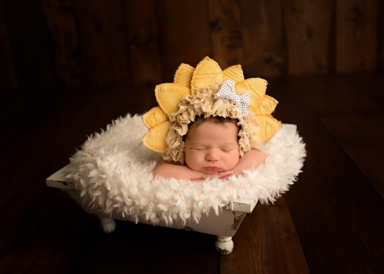 Nashville Newborn Photographer Laura Janicek Photography