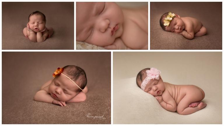 Nashville Franklin Newborn Photographer